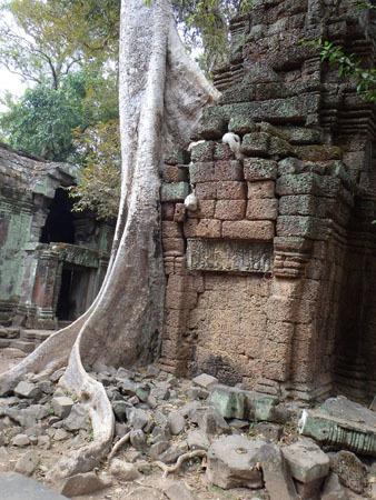 カンボジア~アンコール・ワット&タ・プローム_f0208315_15004323.jpg