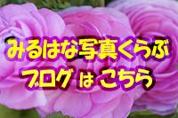 c0037519_00463661.jpg