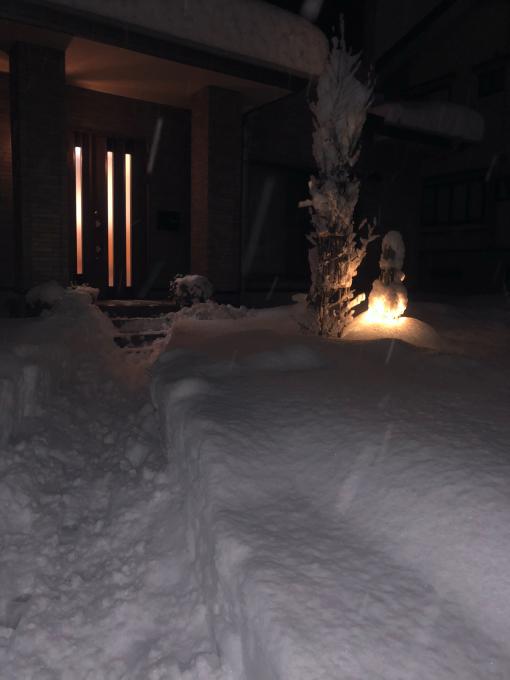 いきなり大雪_d0182179_23033000.jpg