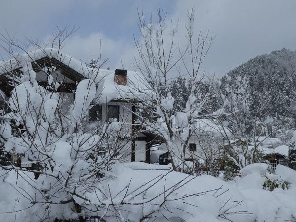 雪景色_e0365880_18584805.jpg