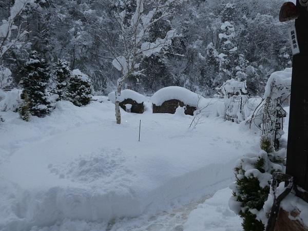 雪景色_e0365880_18585844.jpg