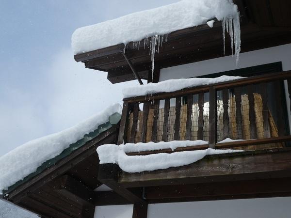 雪景色_e0365880_18592266.jpg