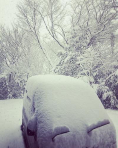 大雪_a0197647_14053853.jpg
