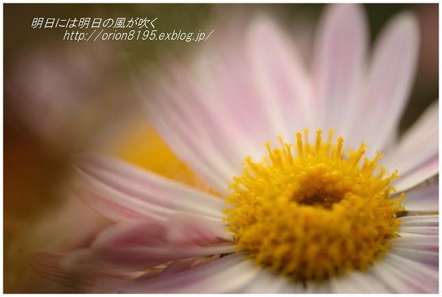 f0361079_18501335.jpg