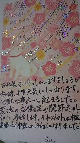 f0242002_01531744.jpg