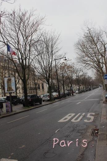 パリの旅日記!待望のイブ・サン・ローラン美術館(୨୧ᵕ̤ᴗᵕ̤)_a0213806_22561449.jpeg