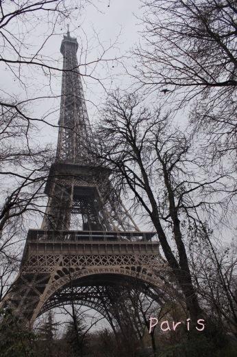 パリの旅日記!待望のイブ・サン・ローラン美術館(୨୧ᵕ̤ᴗᵕ̤)_a0213806_22582487.jpeg
