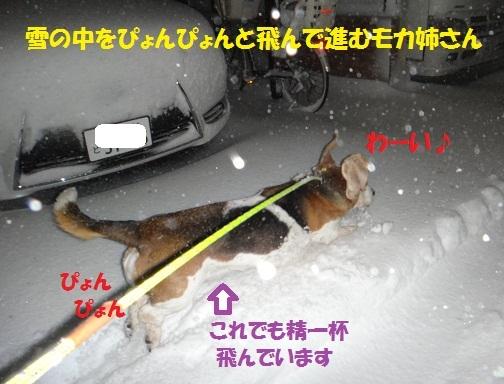 f0121712_08473567.jpg