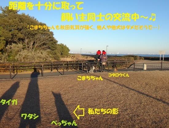 f0121712_21524201.jpg
