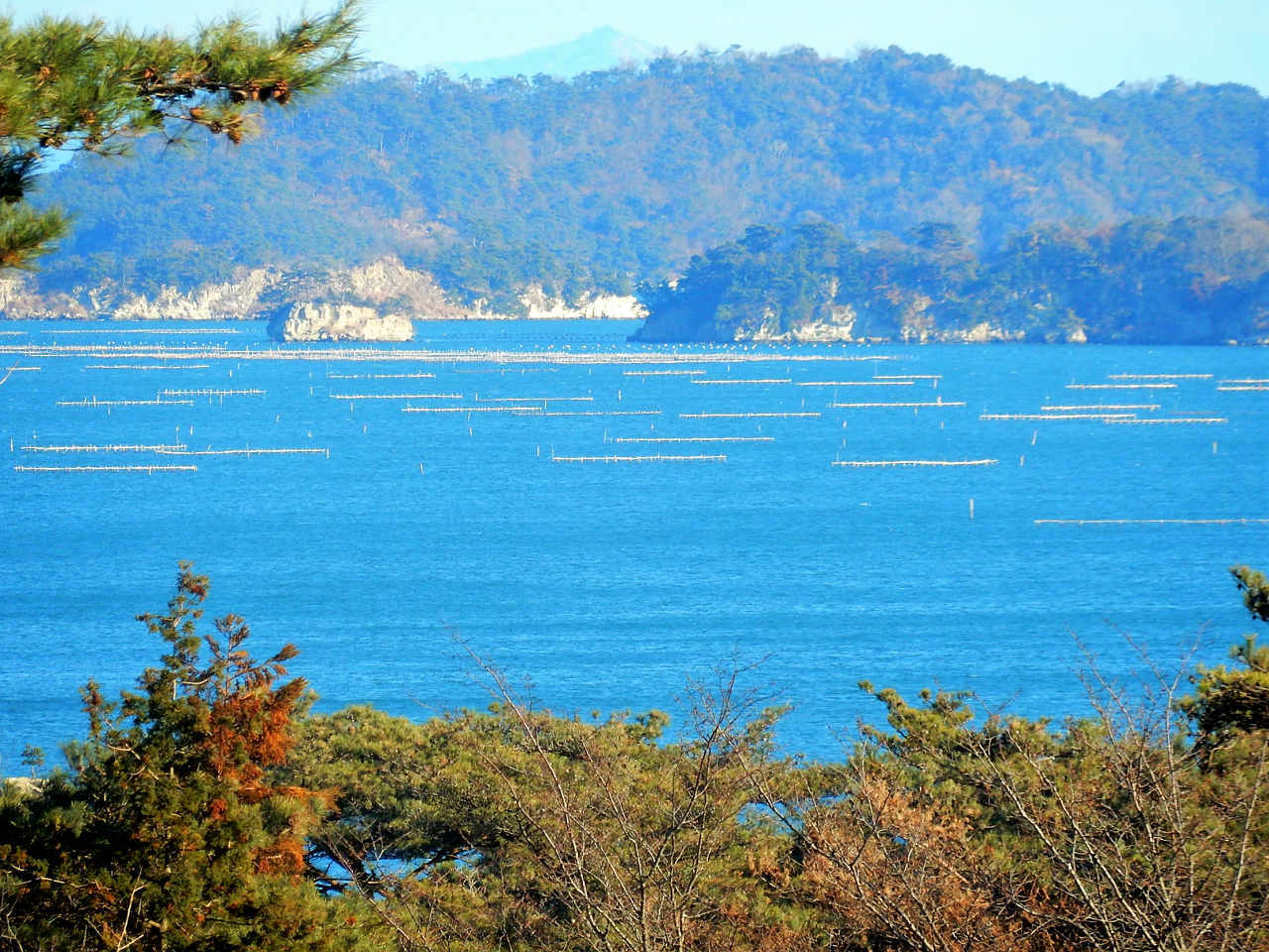 遠回りして松島へ_a0148206_11213110.jpg