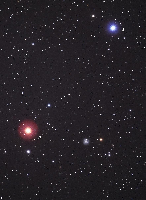 NGC3184_e0344621_0225410.jpg