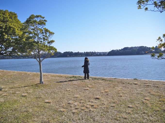 佐鳴湖とケーキ_a0216871_09095785.jpg