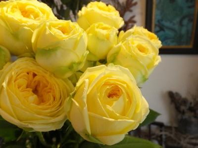 オークリーフ(黄色の花)_f0049672_16451063.jpg