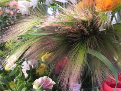 オークリーフ(黄色の花)_f0049672_16455295.jpg
