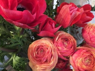 オークリーフ(黄色の花)_f0049672_17094239.jpg