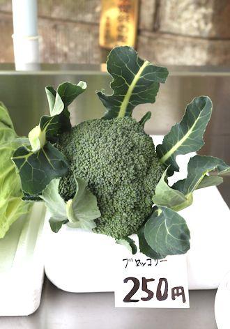お散歩で新鮮野菜をゲット♪_c0090198_18322948.jpg