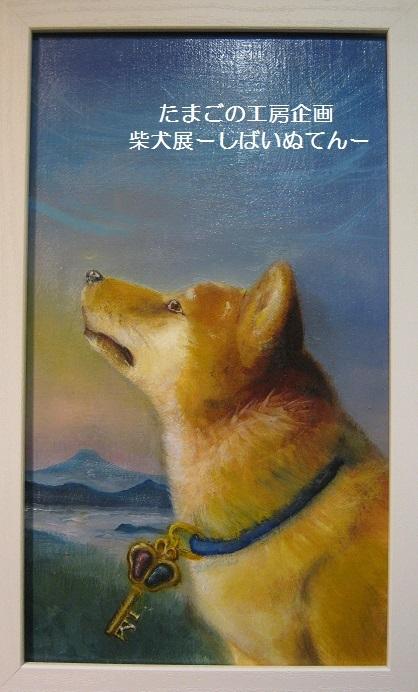 たまごの工房企画 柴犬展 ーしばいぬてんー その6_e0134502_17212161.jpg
