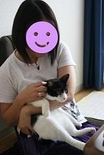 猫たち、幸せ賀状!_f0242002_14191109.jpg