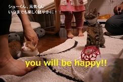 猫たち、幸せ賀状!_f0242002_15035902.jpg