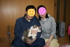 猫たち、幸せ賀状!_f0242002_19442573.jpg