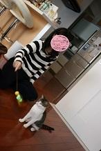 猫たち、幸せ賀状!_f0242002_19453397.jpg