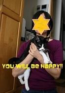 猫たち、幸せ賀状!_f0242002_19460222.jpg