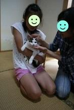 猫たち、幸せ賀状!_f0242002_19510215.jpg
