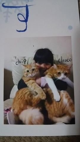 猫たち、幸せ賀状!_f0242002_23344702.jpg