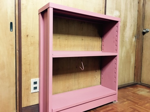 ターナーミルクペイントで本棚を塗替え_d0057215_20461850.jpeg