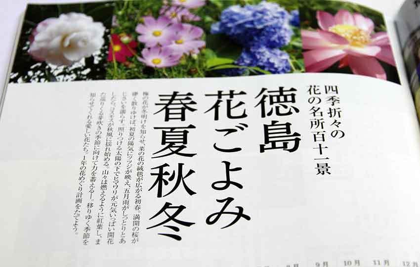 d0058941_20123675.jpg