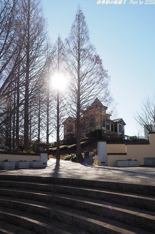 真冬の横浜山手イタリア山庭園_d0358854_20224194.jpg