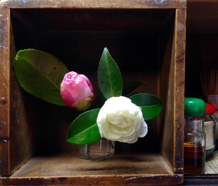 山茶花、椿、エンドウの花_b0087077_23503289.jpg