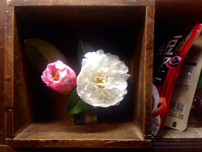 山茶花、椿、エンドウの花_b0087077_23503316.jpg