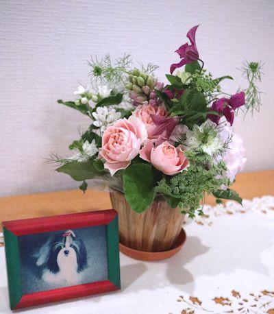 今日は一代目「サニー」のお誕生日です。_c0090198_2134055.jpg