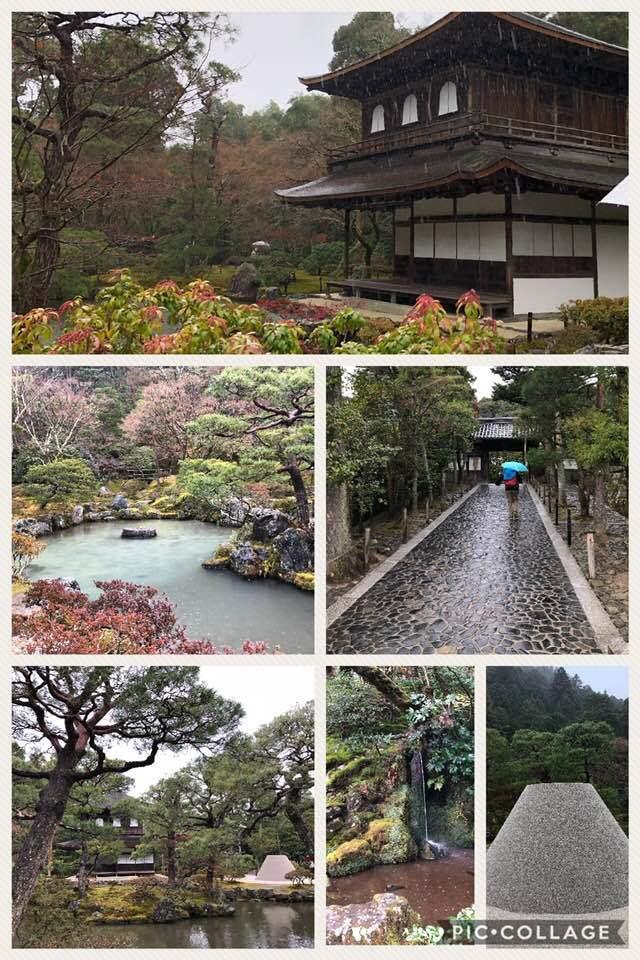 京都へ行って来ました。_f0042307_16564463.jpg