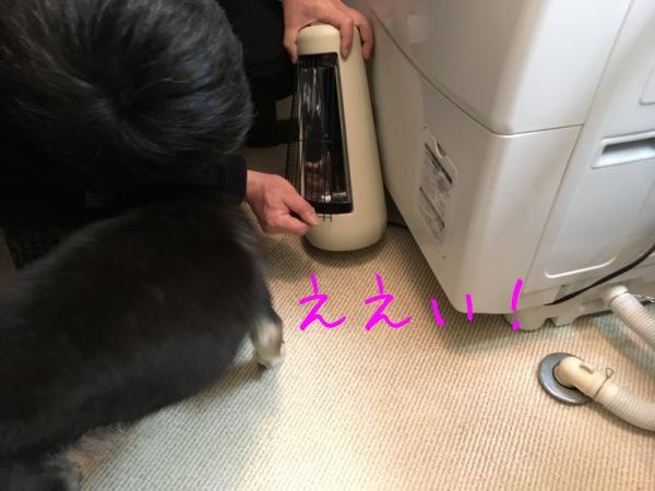 f0369014_10080172.jpg