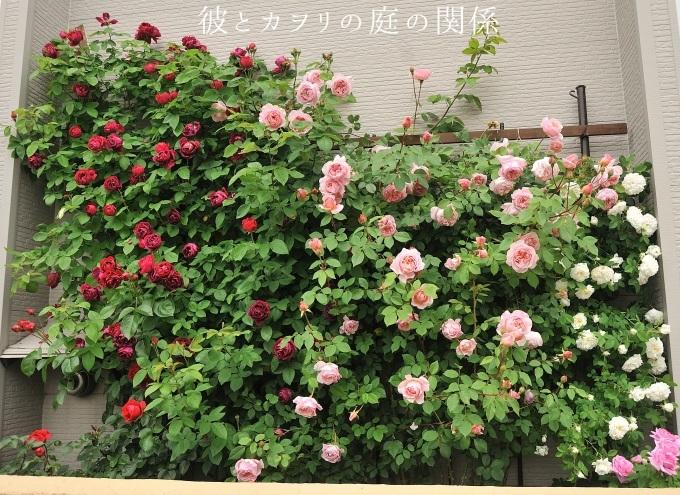 c0365716_19545827.jpg