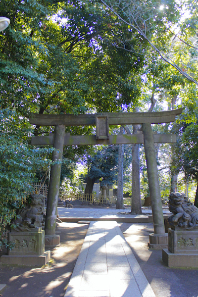 恵比寿から渋谷までお散歩しながら外撮り_a0275527_22395129.jpg