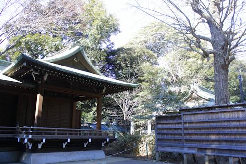 恵比寿から渋谷までお散歩しながら外撮り_a0275527_22395235.jpg