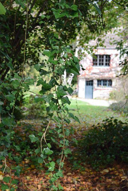 Jouy-en-Josasの森の中に迷い込んだ様な・・・_b0346275_07051278.jpg