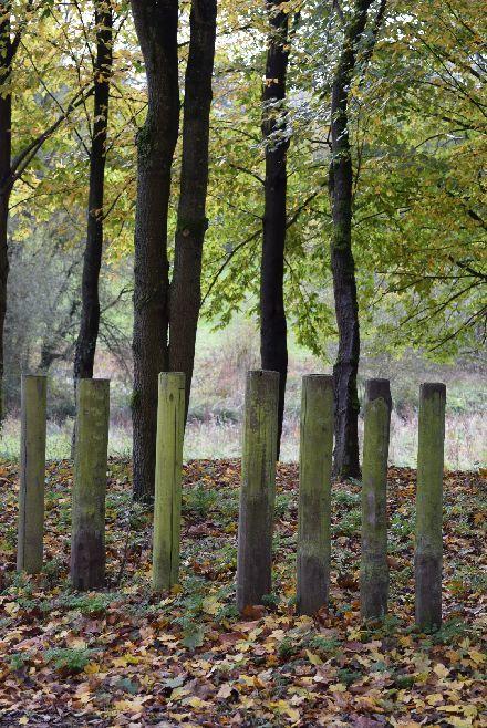 Jouy-en-Josasの森の中に迷い込んだ様な・・・_b0346275_07054778.jpg