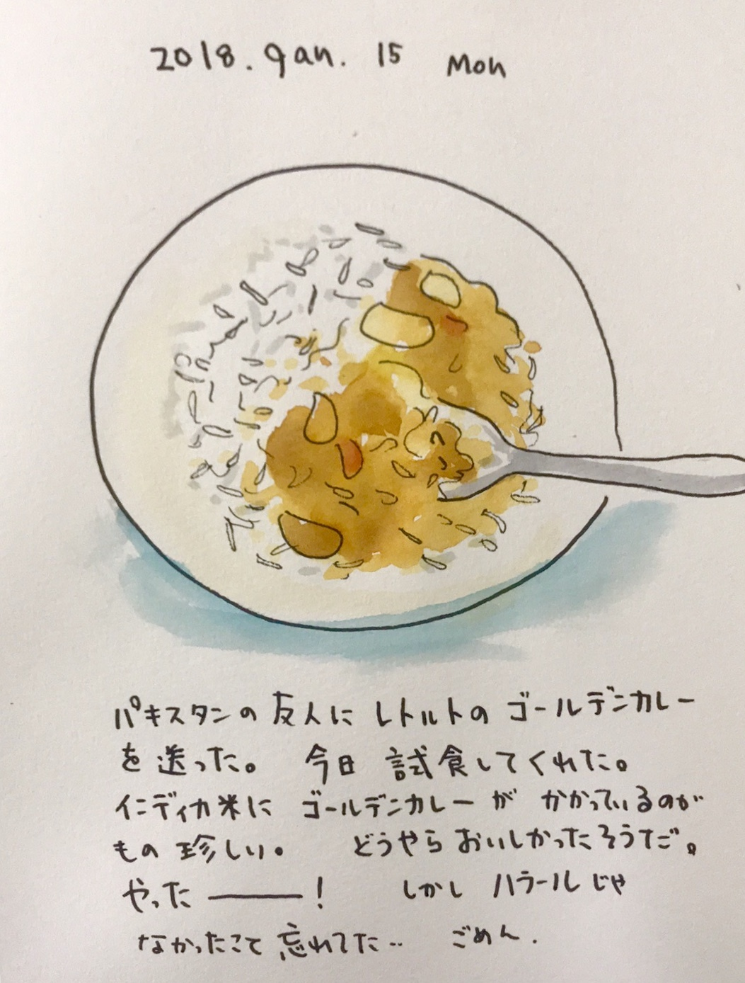 カレーの王国に日本製カレーを送った_f0072976_00434574.jpeg