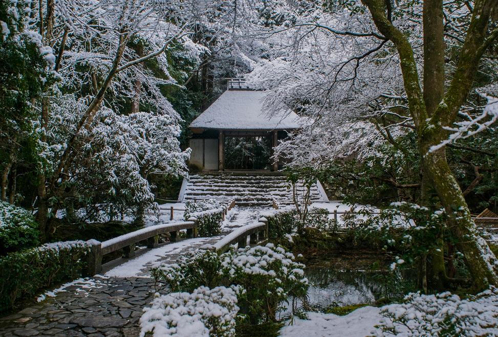 雪の法然院_e0363038_1256148.jpg