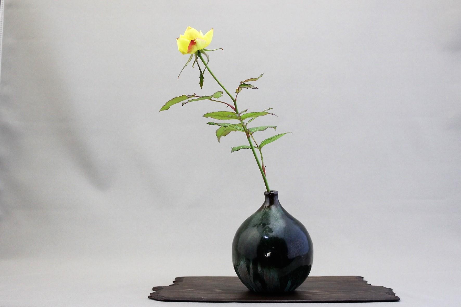 狂い咲き - 雨宮園 ☆~盆栽・山野草・陶芸~☆趣味が仕事でも・・・。