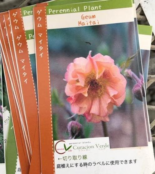 四国へ・・・・・愛媛県から香川へそして高知へ・・・そして京都・・_b0137969_07103186.jpg