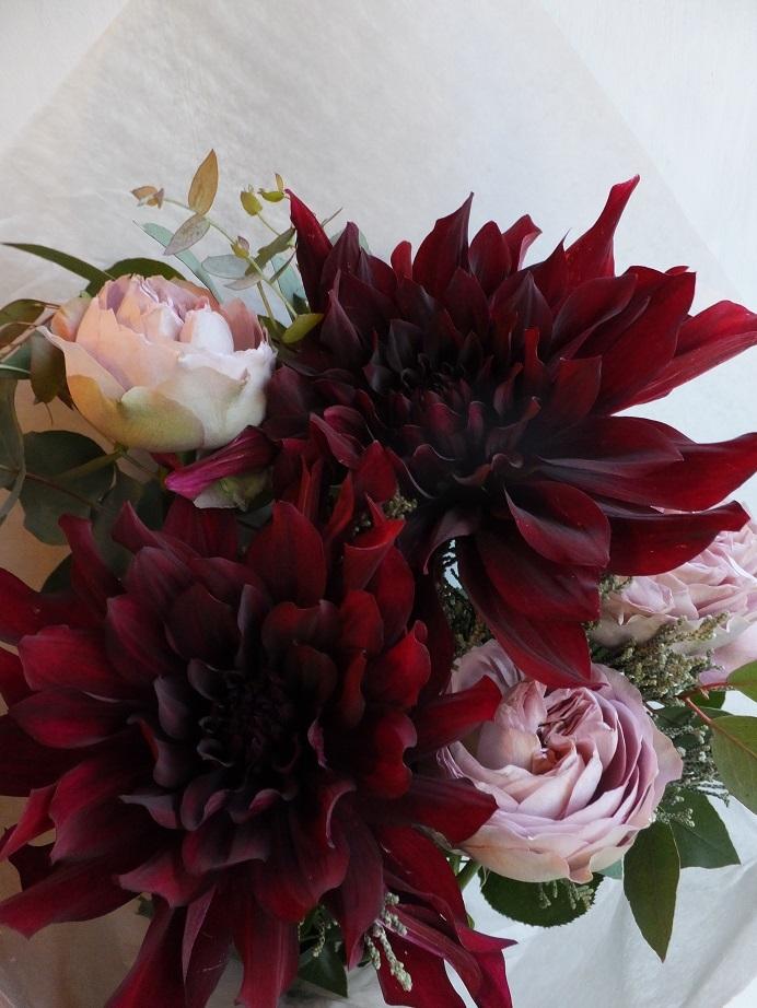 オークリーフ(大輪系の花)_f0049672_14513848.jpg