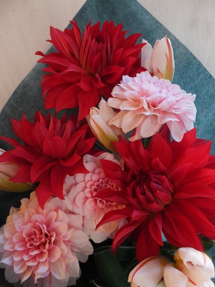 オークリーフ(大輪系の花)_f0049672_14525634.jpg