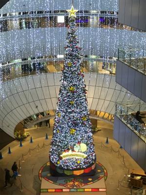 クリスマス クラッシックコンサート_f0220089_11560395.jpg