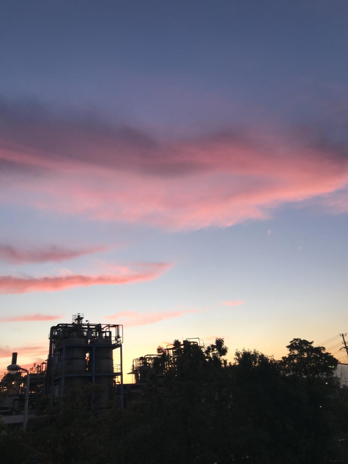 夕焼けと、2月休園日のお知らせ_b0263390_09331222.jpg