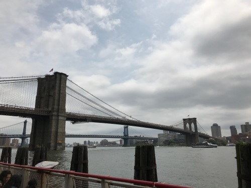 N.Y.  ニューヨーク便り〜街編〜_d0225198_13350054.jpeg